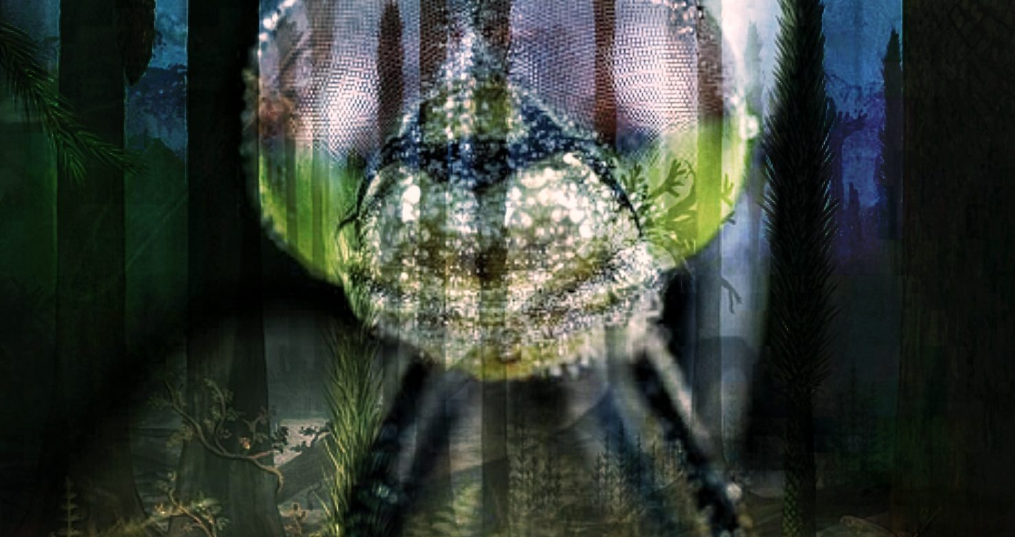 Meganeura Giant Dragonfly Carboniferous